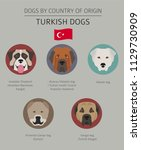 dogs by country of origin.... | Shutterstock .eps vector #1129730909