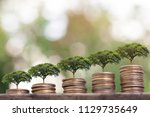 tree plant growing  on money... | Shutterstock . vector #1129735649