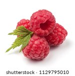 group of fresh red raspberries... | Shutterstock . vector #1129795010