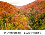 colorful mountains range in... | Shutterstock . vector #1129795859