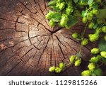 hop twig over old wooden table... | Shutterstock . vector #1129815266