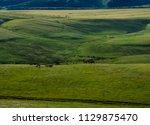 horses at mountain meadows ... | Shutterstock . vector #1129875470