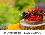 autumn berries and fruits on... | Shutterstock . vector #1129922909