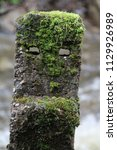 Roadside Concrete Posts On The...