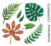 vector tropical leaves on white ... | Shutterstock .eps vector #1129999373