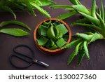 aloe vera on dark background  ... | Shutterstock . vector #1130027360