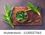 aloe vera on dark background  ... | Shutterstock . vector #1130027363