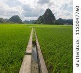 guilin rice mountain range | Shutterstock . vector #1130047760