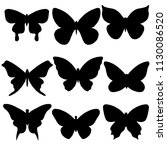 A Set Of Different Butterflies...