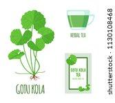 gotu kola set with tea package... | Shutterstock .eps vector #1130108468