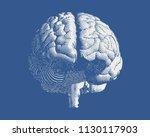 white brain engraving drawing... | Shutterstock .eps vector #1130117903