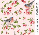 seamless pattern with bird on a ... | Shutterstock . vector #1130286593