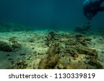 an old anchor chain on the... | Shutterstock . vector #1130339819