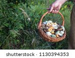 Wicker Basket Full Of Wild...