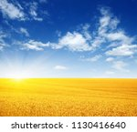 wheat field and sun in the sky  | Shutterstock . vector #1130416640