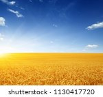 wheat field and sun in the sky | Shutterstock . vector #1130417720