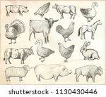 collection of farm animals on a ... | Shutterstock .eps vector #1130430446