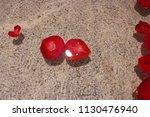 rose petals in water in grey... | Shutterstock . vector #1130476940
