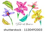 tropical flowers  jungle leaves ... | Shutterstock . vector #1130492003