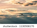 airplane silhouette with clouds ... | Shutterstock . vector #1130508170