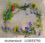 A frame from rowan, gentian and tansy on canvas - stock photo