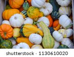 Crate Of Gourds Bountiful Fall...