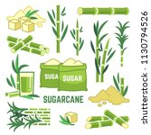 sugar plant agricultural crops  ... | Shutterstock .eps vector #1130794526