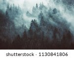 misty landscape with fir forest ... | Shutterstock . vector #1130841806