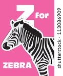Z For The Zebra  An Animal...