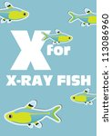 X For The X Ray Fish  An Anima...