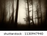 misty forest fantasy landscape | Shutterstock . vector #1130947940