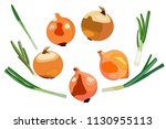 illustration of 10 onions of... | Shutterstock .eps vector #1130955113