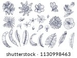 set of tropical flowers and... | Shutterstock .eps vector #1130998463