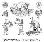 cocoa or coffee plantation.... | Shutterstock .eps vector #1131018749