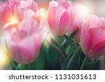 pink tulips bunch in dreamy... | Shutterstock . vector #1131031613