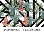 kentia leaves and exotic... | Shutterstock .eps vector #1131052286