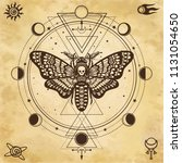 mystical drawing  moth dead... | Shutterstock .eps vector #1131054650