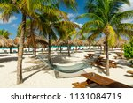 hammocks and sunbeds under the... | Shutterstock . vector #1131084719