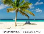 sunbeds under a palm tree on... | Shutterstock . vector #1131084740