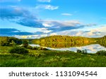 forest river shore panoramic... | Shutterstock . vector #1131094544