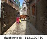 animal in leh market | Shutterstock . vector #1131102410