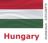 20 august  hungary independence ... | Shutterstock .eps vector #1131136973