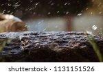 Wet Stone In The Rain. Rain...