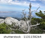 northern velebit national park... | Shutterstock . vector #1131158264