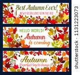 autumn season banner with... | Shutterstock .eps vector #1131223073
