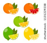 icons vector citrus fruits ... | Shutterstock .eps vector #1131229238