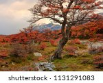 view on the mountains through... | Shutterstock . vector #1131291083