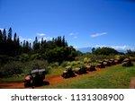 lahaina  hawaii usa   march 29... | Shutterstock . vector #1131308900