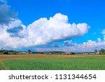 summer landscape with rural... | Shutterstock . vector #1131344654