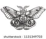 butterfly tattoo art. dotwork... | Shutterstock . vector #1131349703